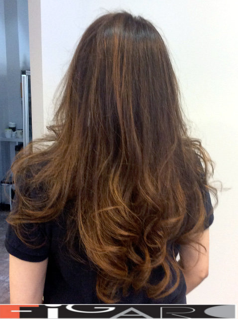 Honey Balayage for Brunettes by Figaro - BEST TORONTO's HAIR SALON