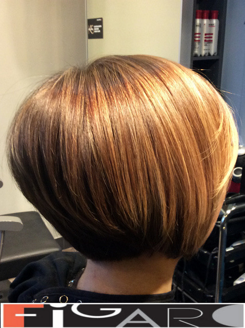 Honey HighLights Short Layered Bob Figaro Hair Salon Toronto