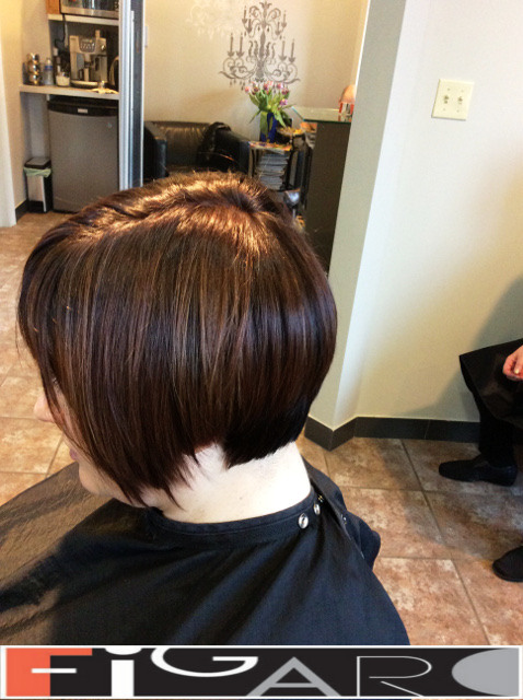 Chocolate Brown Hair Bob Cut Figaro Hair Salon Toronto