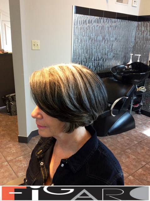 Grey Streaks Bob Cut Figaro Hair Salon Toronto