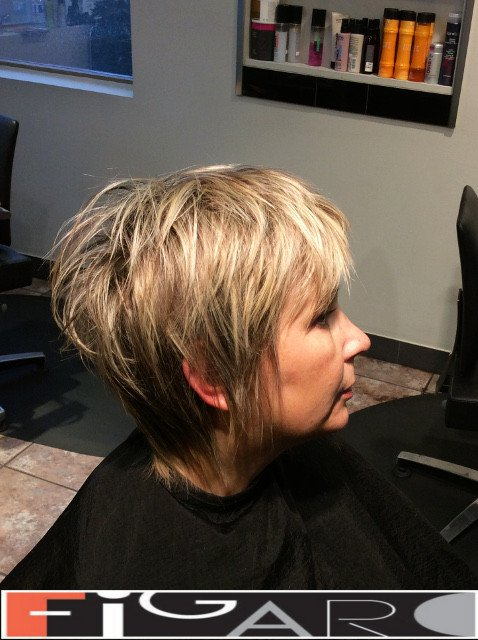 Pixie Cut HighLights Hair Figaro Hair Salon Toronto