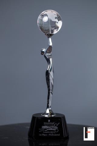 1st place professional Schwarzkopf Toronto 2010