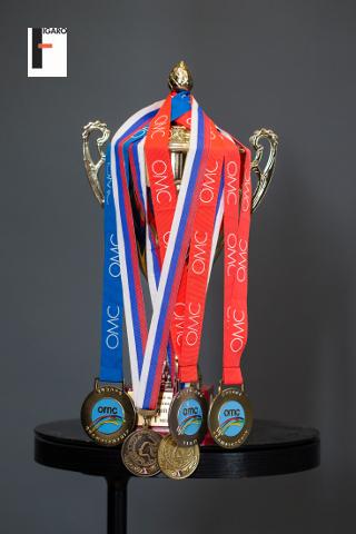 OMC HairWorld Elena's medals for 2013-2014 seasons