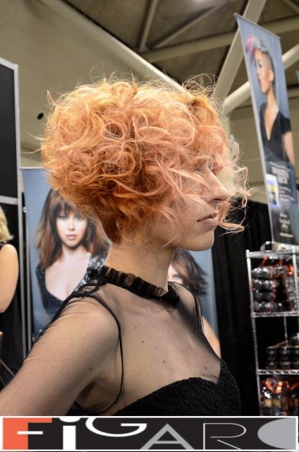 Graduated Bob Curly Hair Cupper Hair soft Pink Highlights at ABA TORONTO - Best Toronto's hair Salon