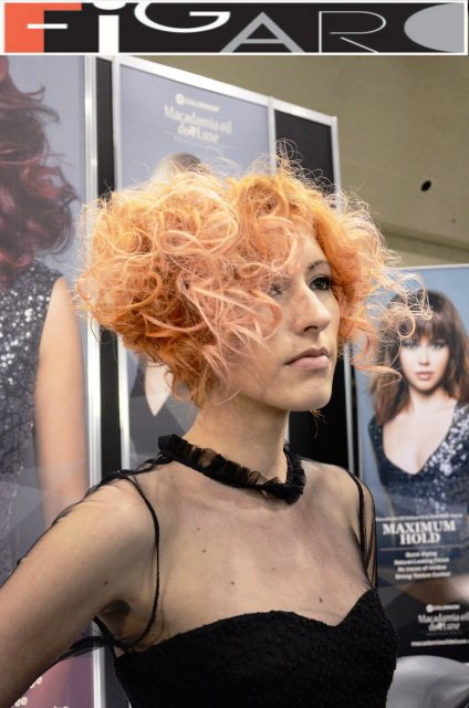 Graduated Bob Curly Hair Cupper Hair soft Pink Highlights at ABA TORONTO by Figaro - Best Toronto's hair Salon