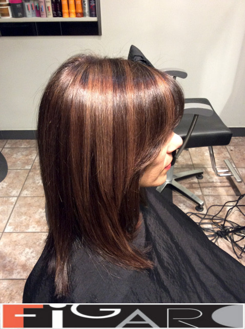 Layered Lob Cut, Rose Caramel Streaks on dark Brown Hair